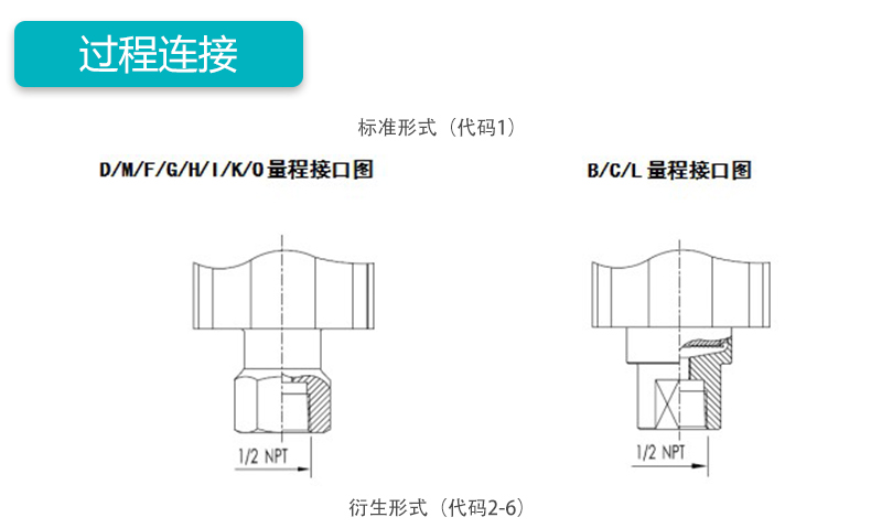 MIK-P3000表压/绝压变送器过程连接